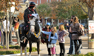 The Woodlands, TX mounted police.